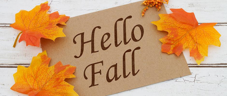 Get Your Furnace Ready With A Fall Tune Up Heating Amp Air